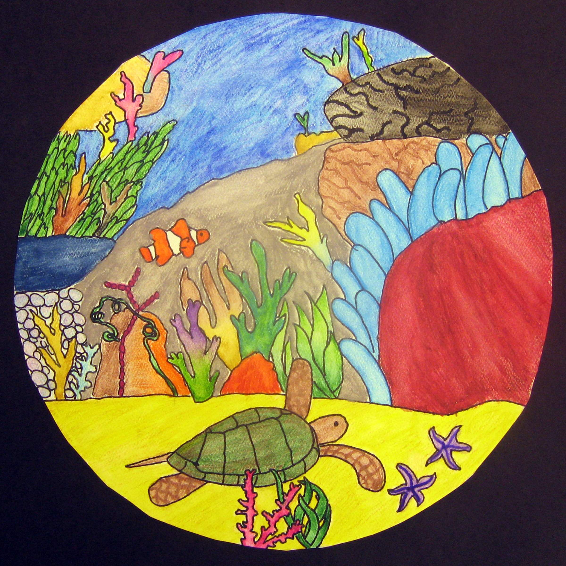 Biome Illustrations Ms Amslers Artroom