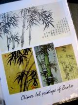bamboo 002
